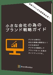 BB_E-book02_3d5_900x (1)