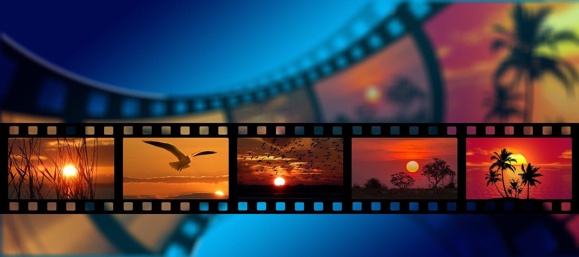 通販サイトには動画がおすすめ!wixで簡単に動画制作ができる?ノウハウ公開